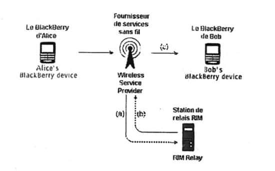 blackberryinseguro