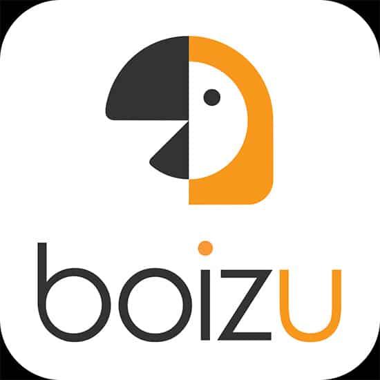 boizu3